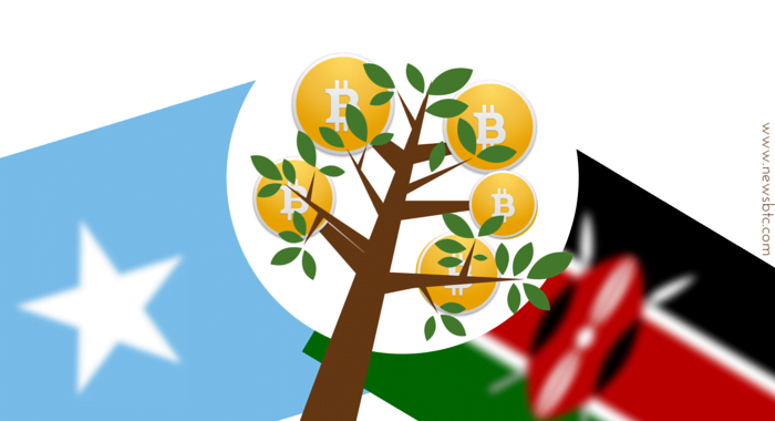 Bitcoin for the Third World Economy