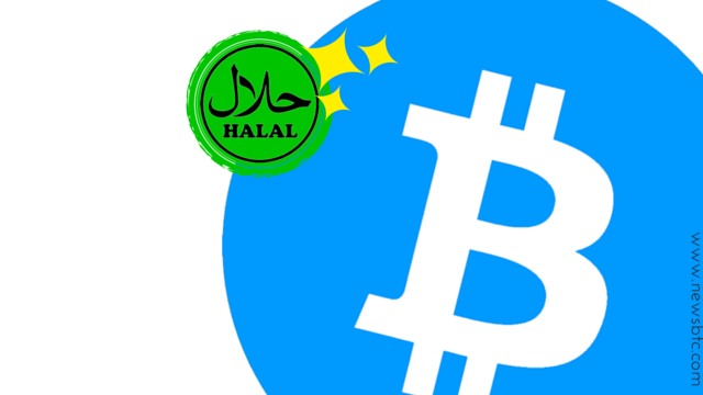 Bitcoin as Halal Microfinancing for Muslims