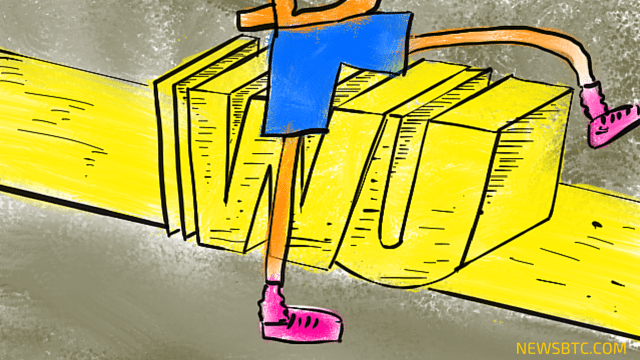 Bitcoin Daily Transaction Values Have Surpassed Western Union. newsbtc bitcoin news.