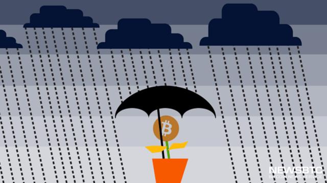 Could Nigerias Decision to Halt Dollar Sales Boost Bitcoin Adoption. newsbtc