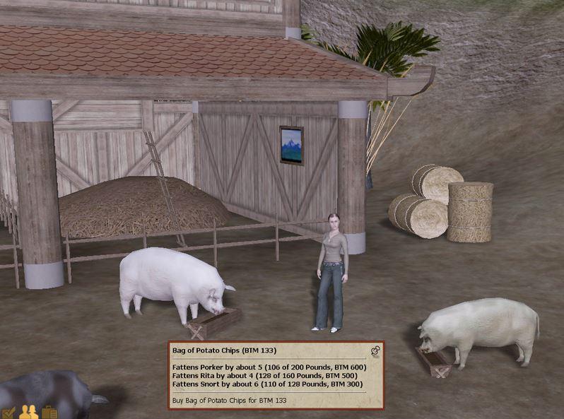 pigsfarm