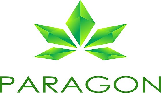 paragon logo big
