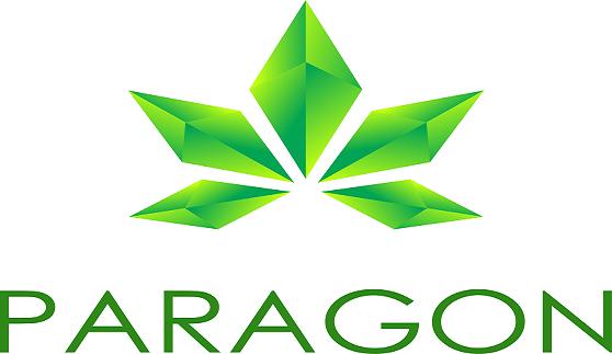 paragon logo big