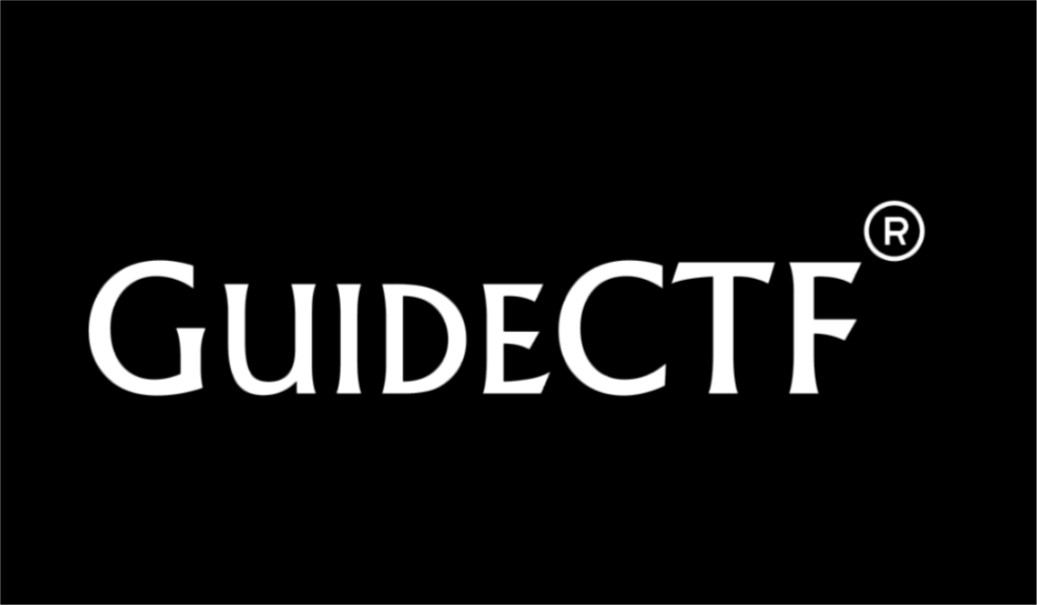 Guide CTF, interview, cryptocurrency, ICO