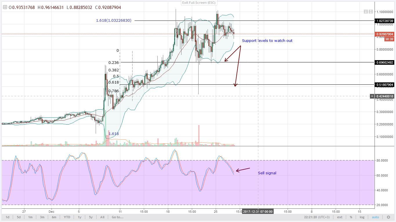 NEM bears target $0.51