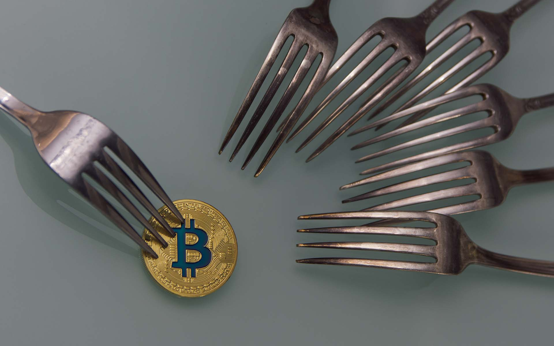 ss bitcoin forks