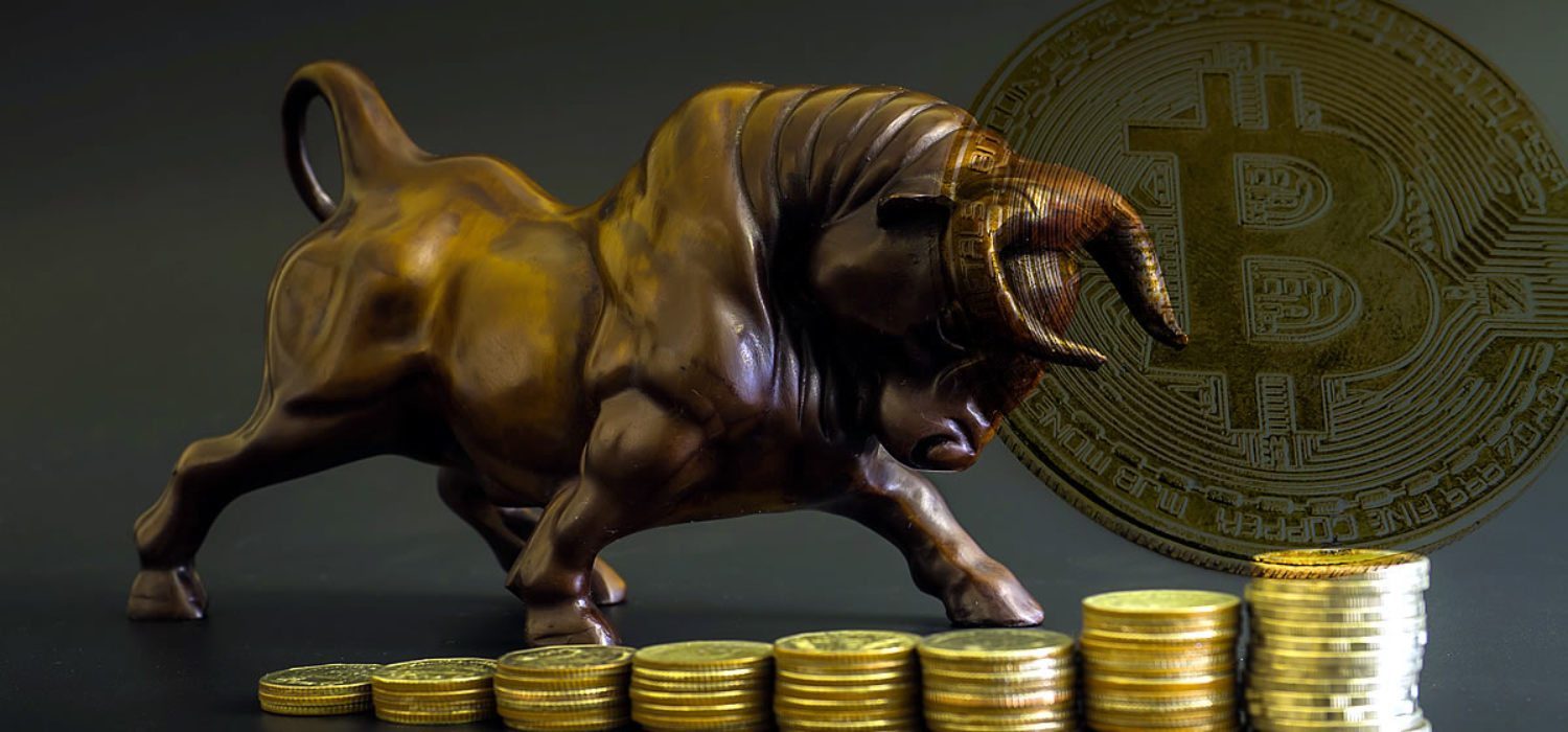 Why The Next Crypto Bull Run Will be Several Magnitudes Bigger