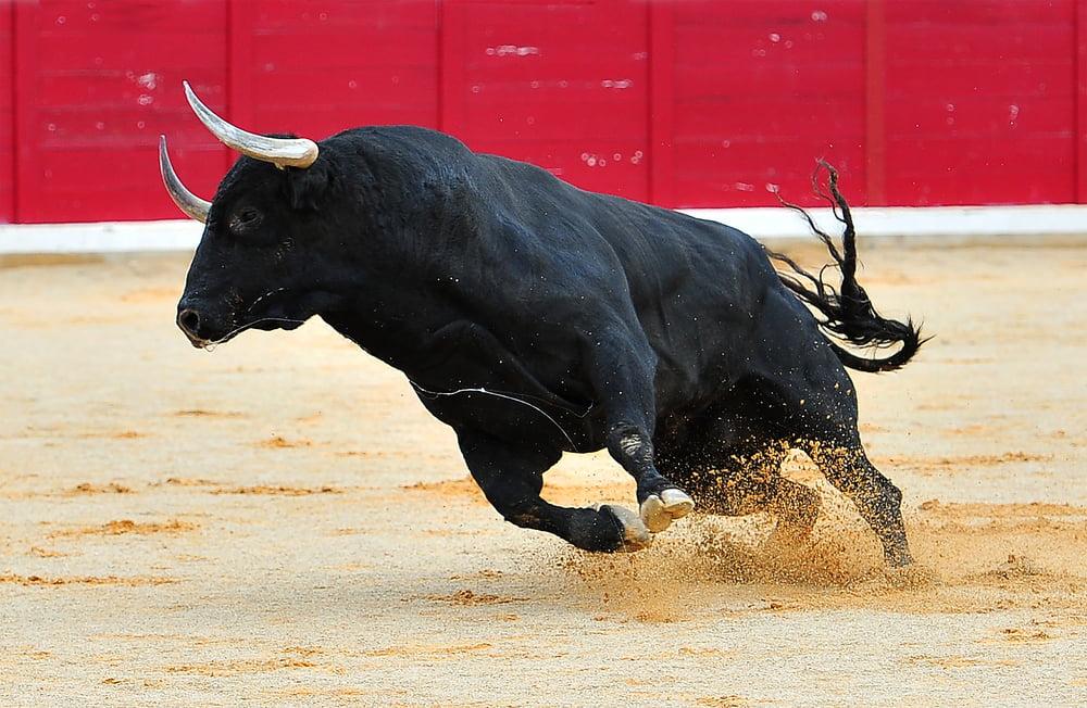 Unbreakable: Mike Novogratz Remains a Bitcoin Bull in a Bleeding Market