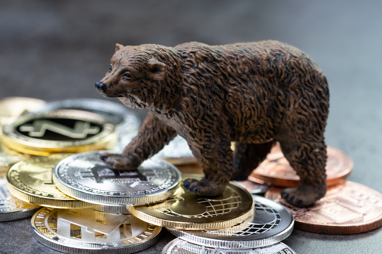 bear market btc)