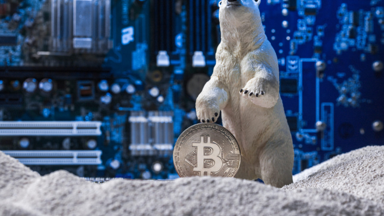 Reddit Founder Talks Crypto Winter and Ongoing Innovation in