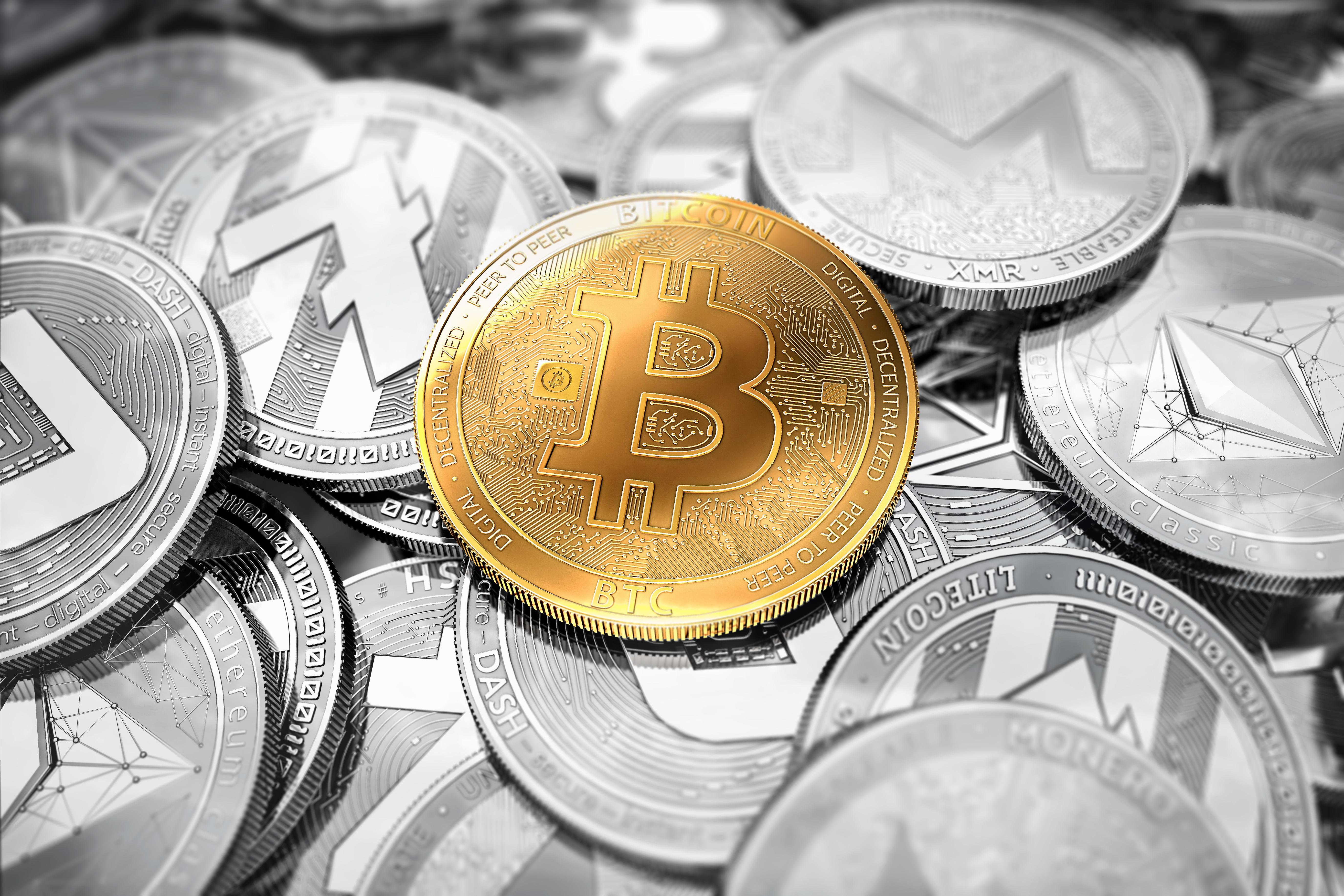 bitcoin wallet info bitcoin bbc