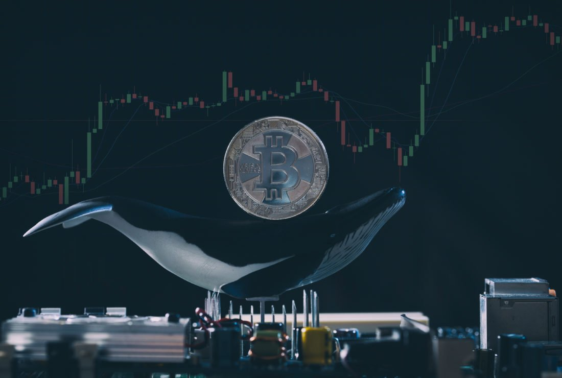Crypto Analytics Firm: Single Strategic Actor Responsible for Bitcoin Price Surge