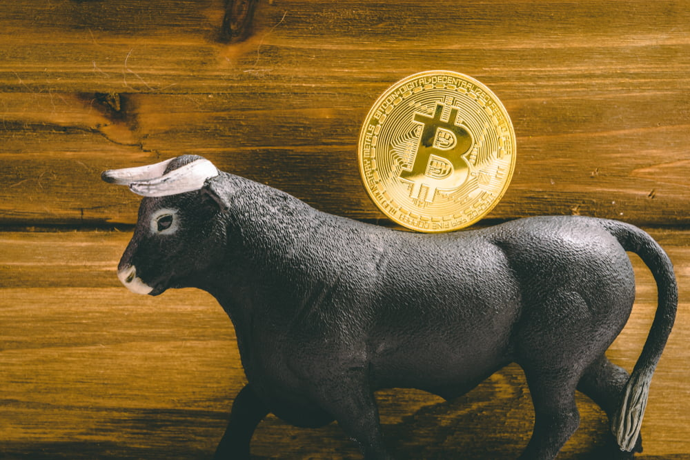Btc bull run imminent