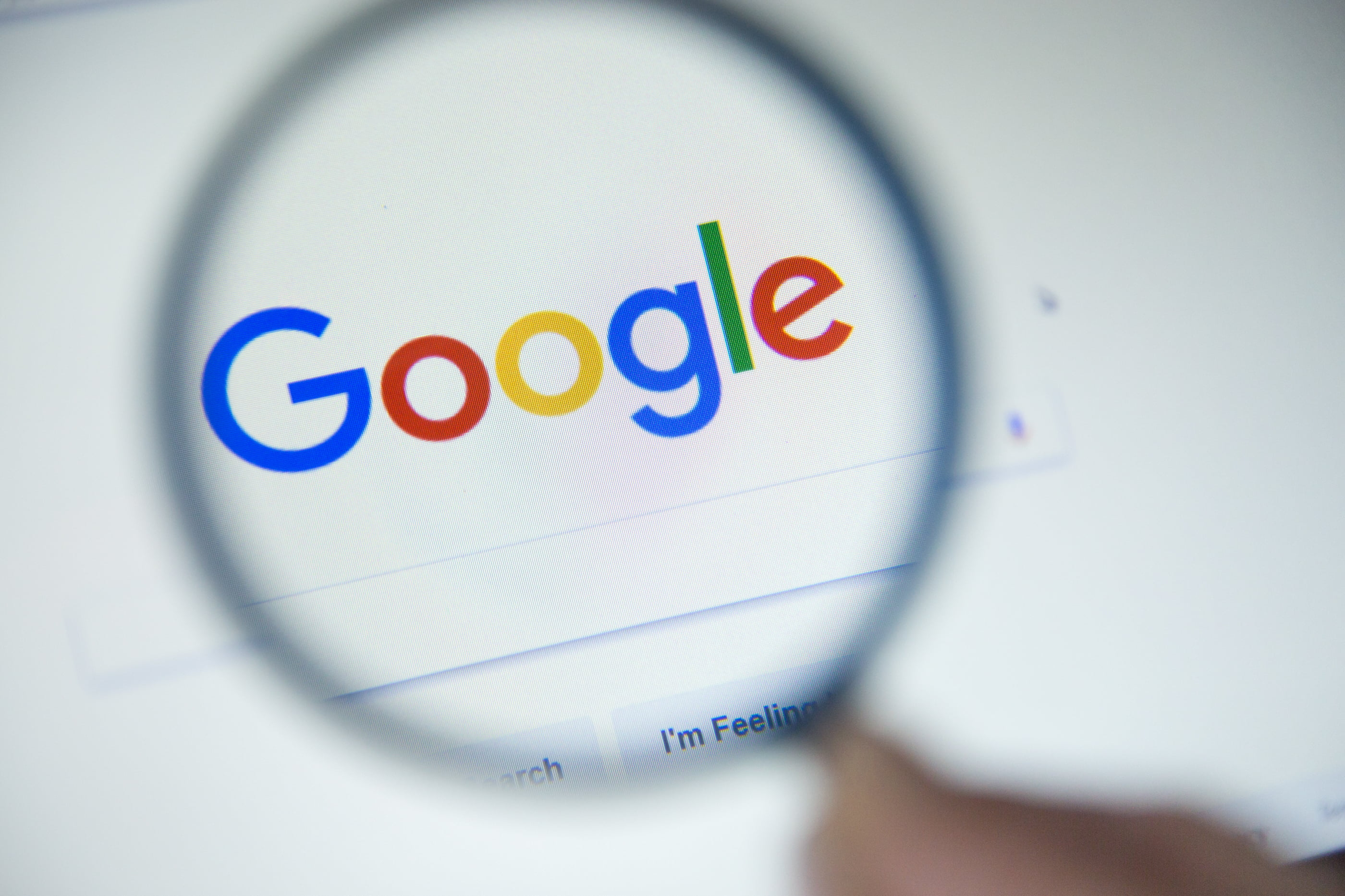 bitcoin altcoins alt season google trends