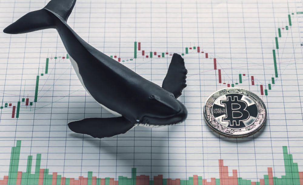 Bitcoin May Be Gearing Up for a Move to $10,000 as Upwards Momentum Continues - newsBTC