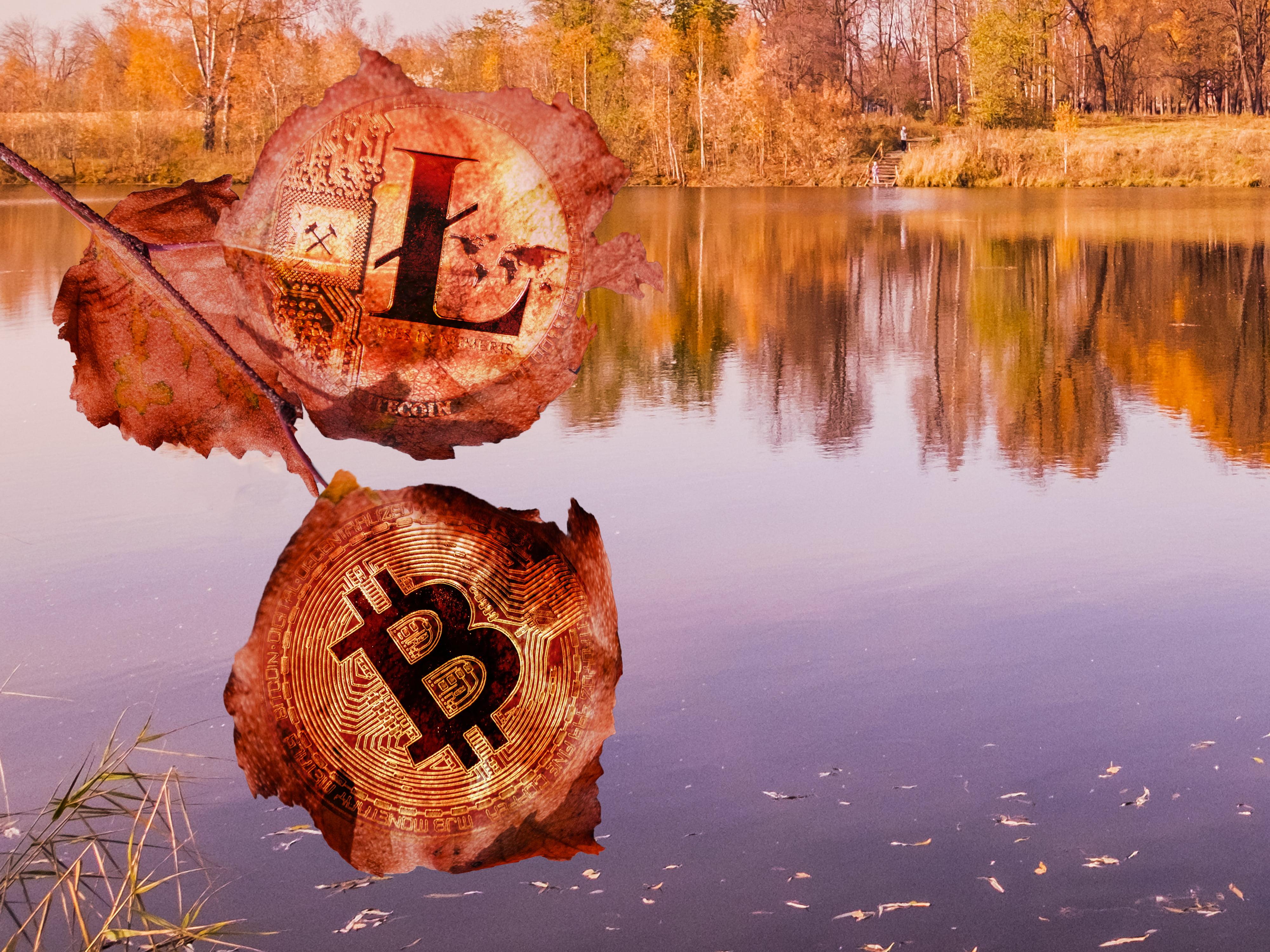 ethereum xrp litecoin bitcoin altcoin alt season crypto