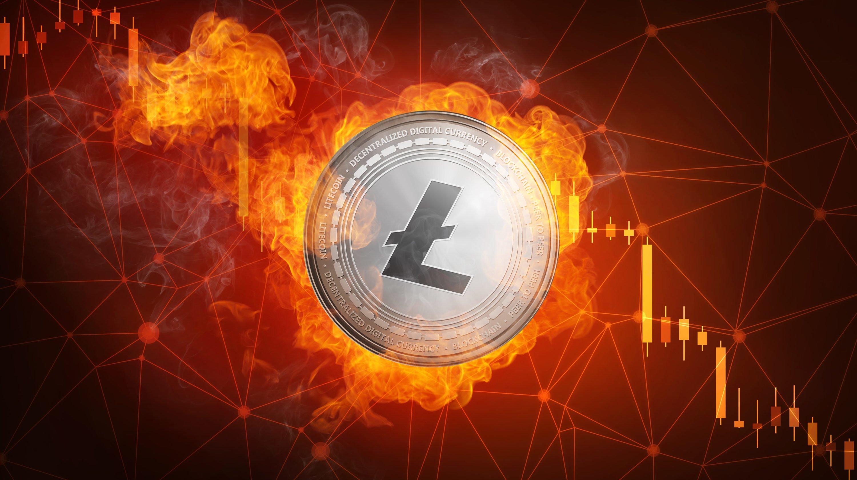 Crypto World Is Bullish on Litecoin Price, But Was Halving Rally