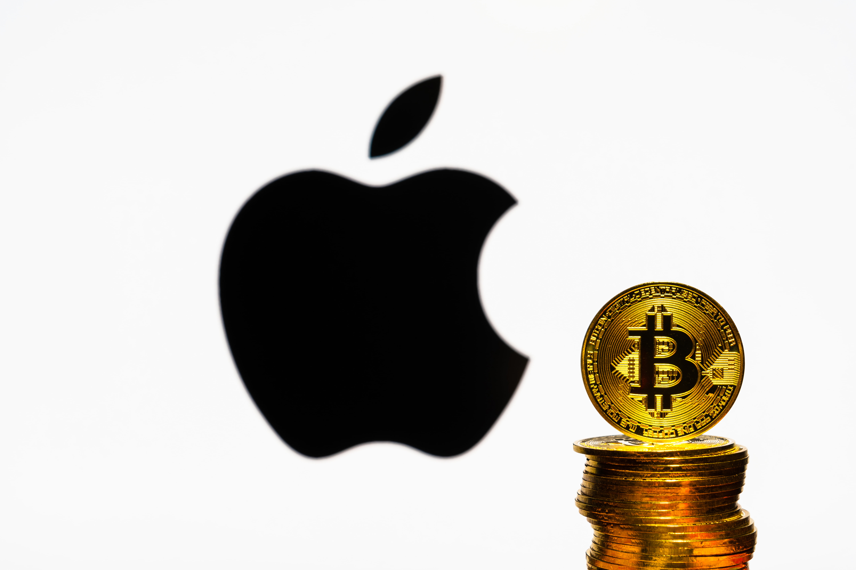 akcijų rinka crashing bitcoin nemokama bitcoin maišytuvo rotatorius