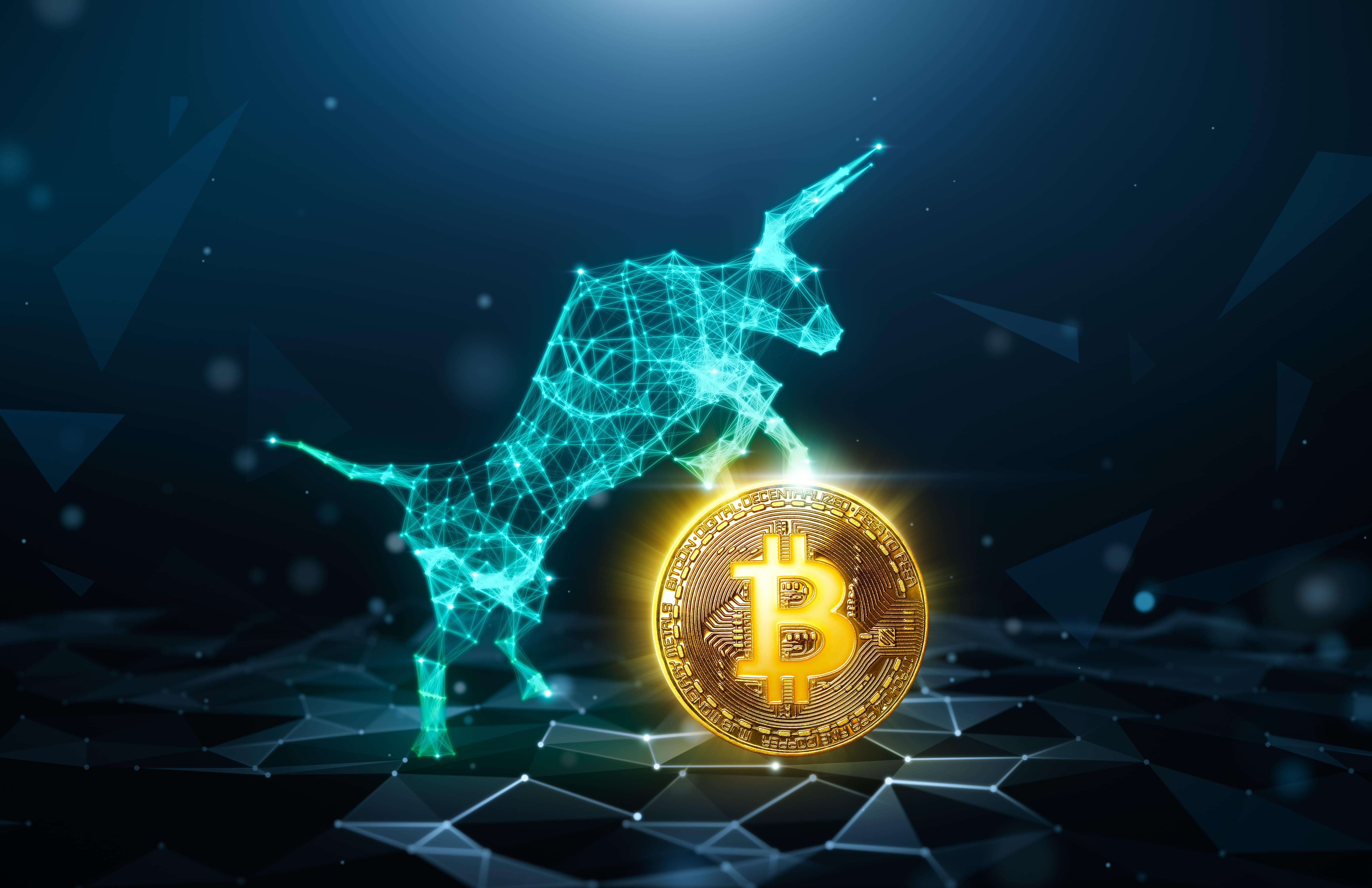 ATTENZIONE! Crypto Bull è una truffa - Davvero?