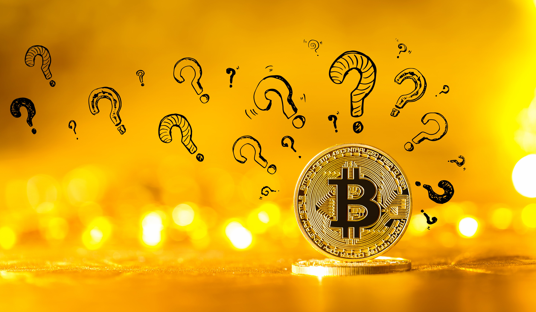 bitcoin price poll