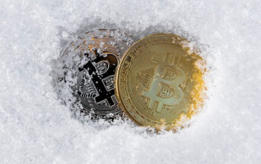 bitcoin crypto winter bear market bottom