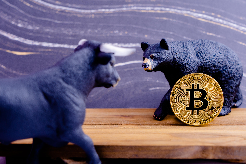 bitcoin bulls crypto analyst