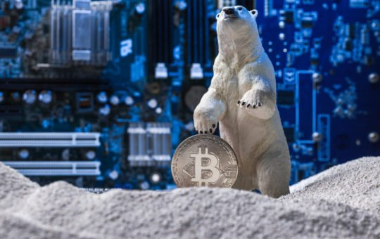 bitcoin bear market crypto winter