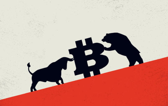 bitcoin price crypto bear bull
