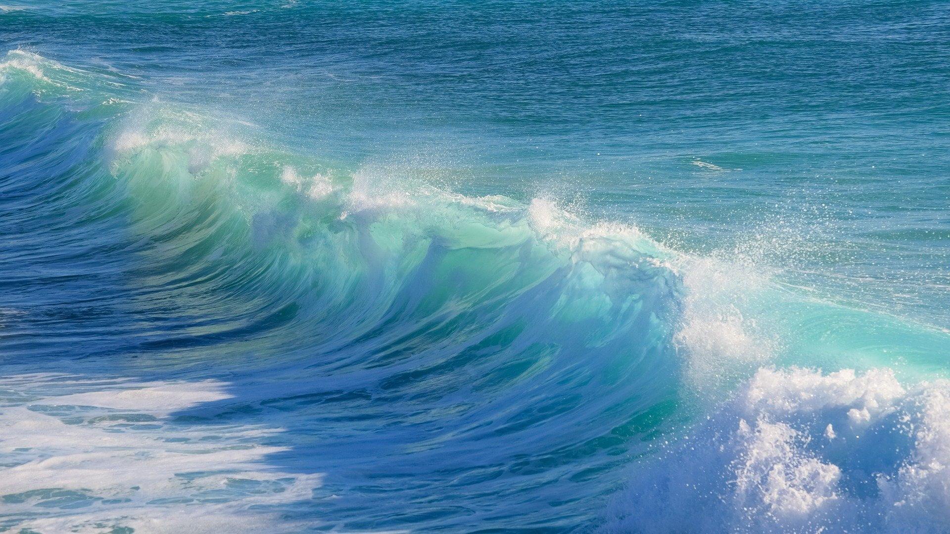 bitcoin elliot wave theory crypto