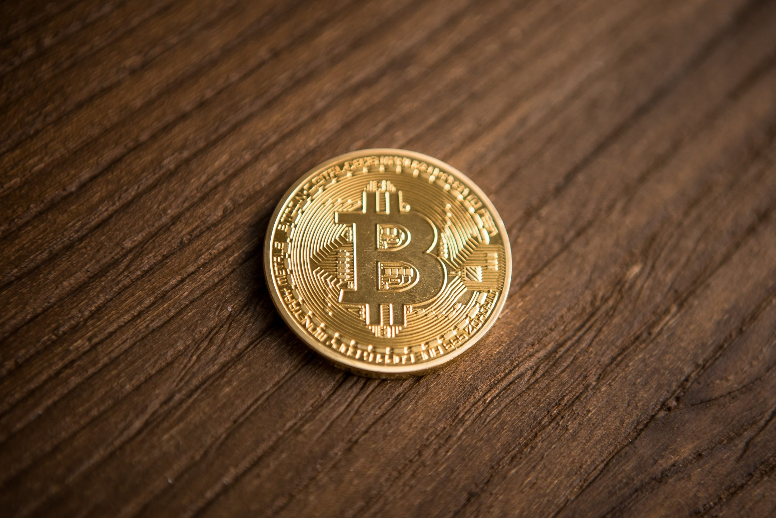 Bitcoin Dave Portnoy