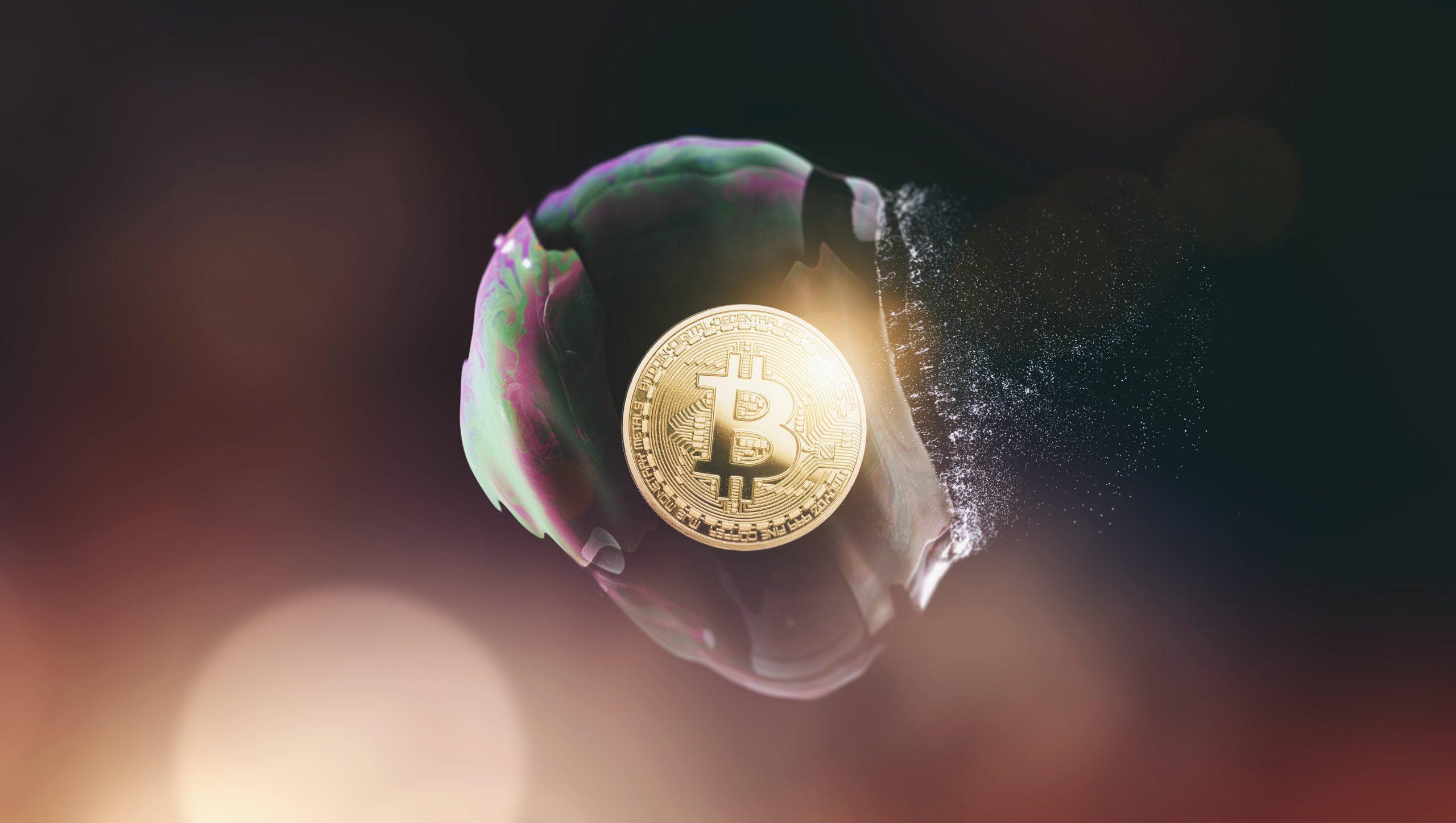 bitcoin bubble crypto google search altcoin