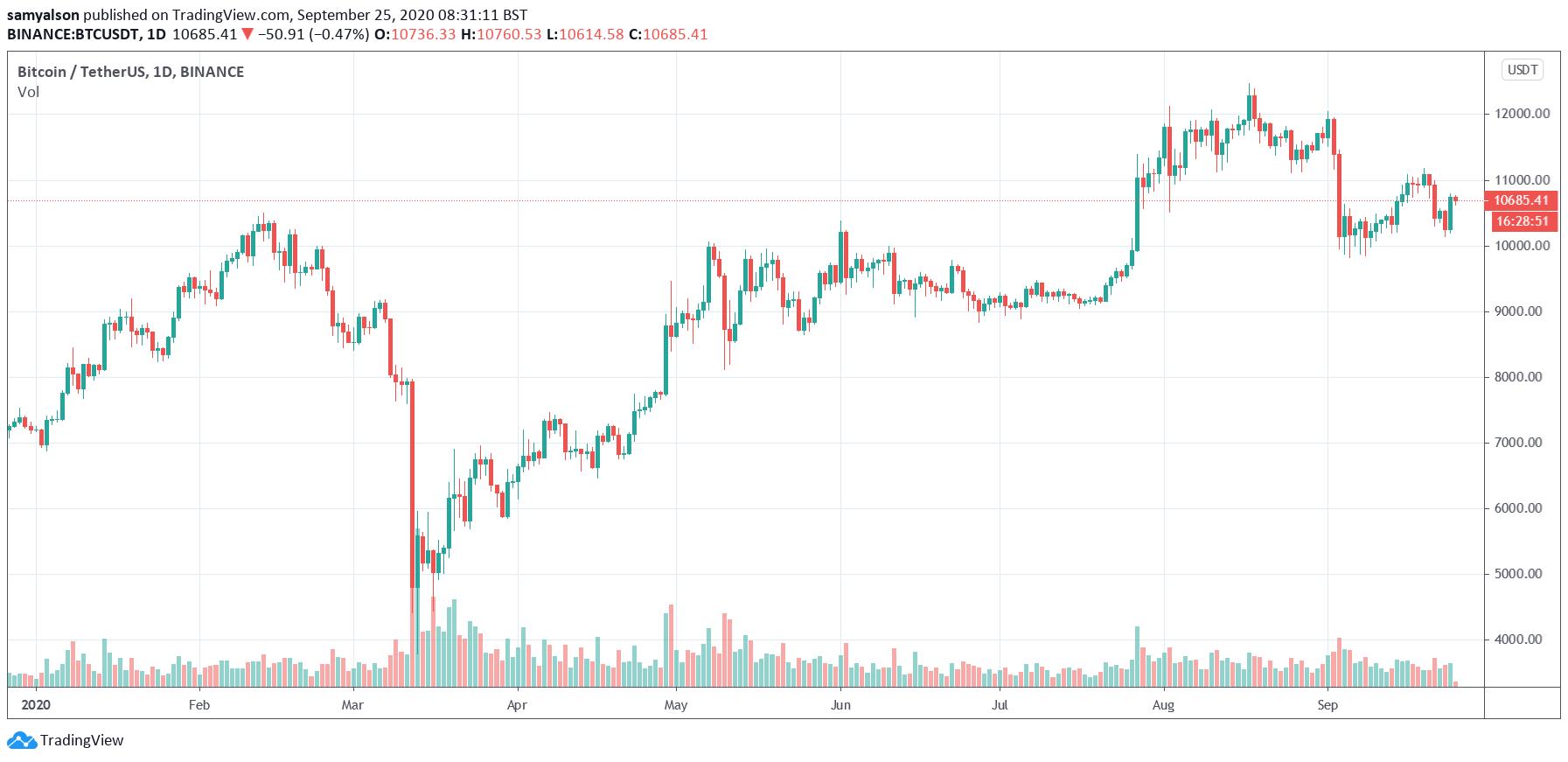 Bitcoin daily YTD chart