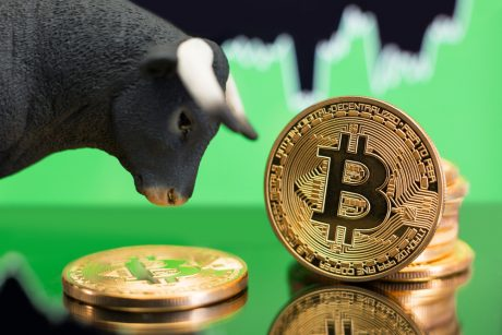 Calls for Another Bitcoin Bull Run Grows as Its Open Interest Soars
