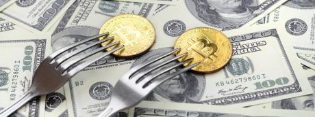 Kim Dotcom Claims This Fork Is More Undervalued Than Bitcoin, Here's Why