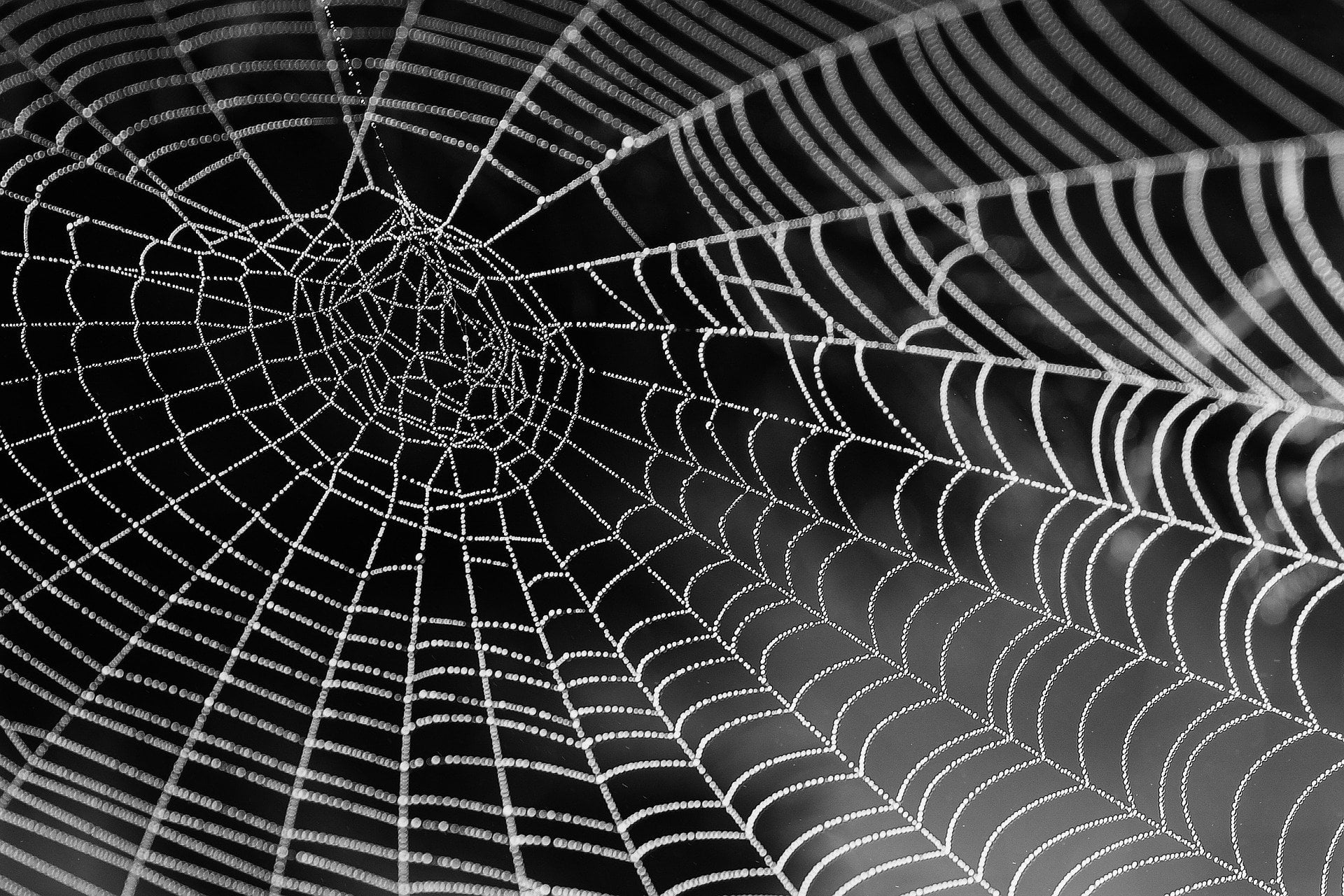 bitcoin dark web monero