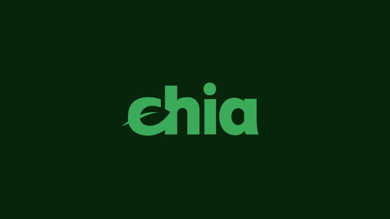 Bram Cohen: Chia Network plánuje nové produkty Defi, zavedla pooling protocol a verzi 1.2.0
