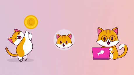 Unlike Dogecoin, Catecoin Gives a New Meaning to Meme Coins with Real Use case