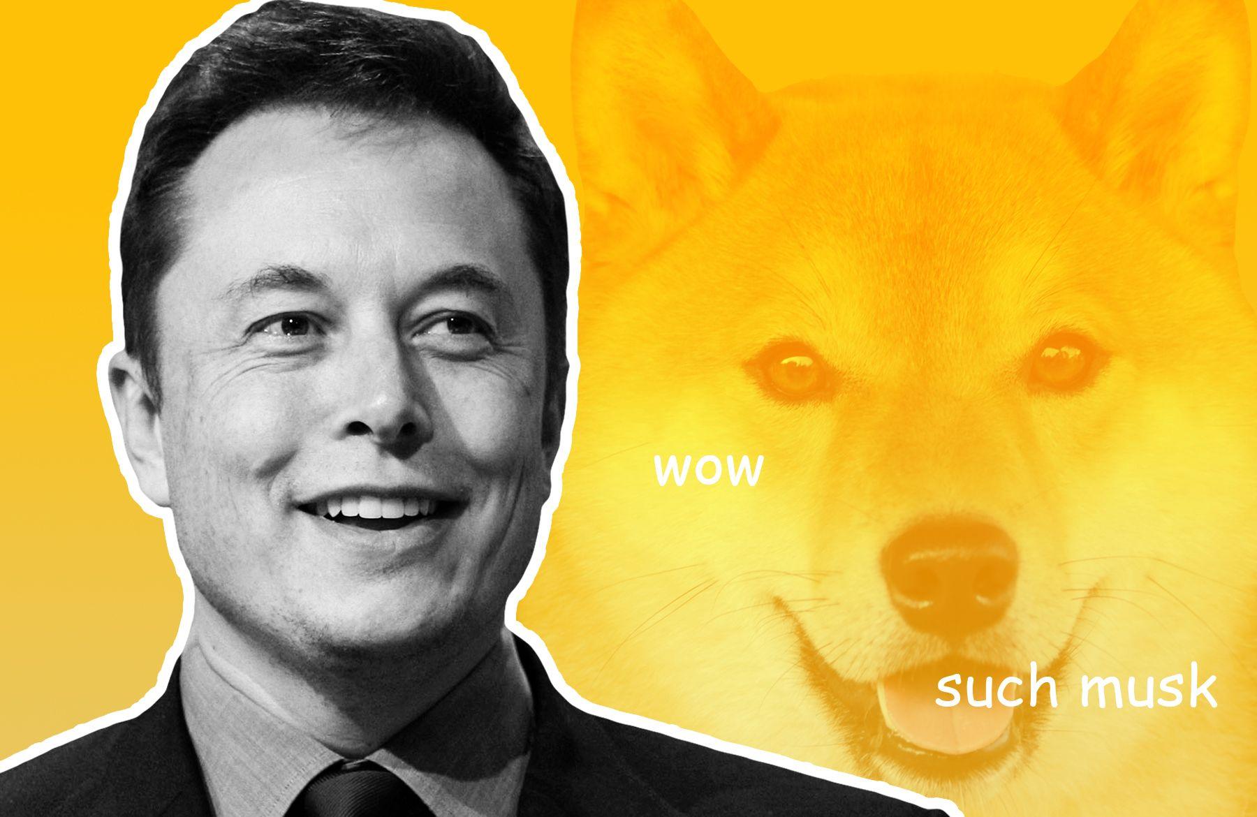 Dog Eat Dog: Elon Musk Leaving Doge Behind For New Dog Coin?