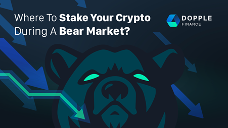 Where To Stake Your Crypto During a Bear Market?