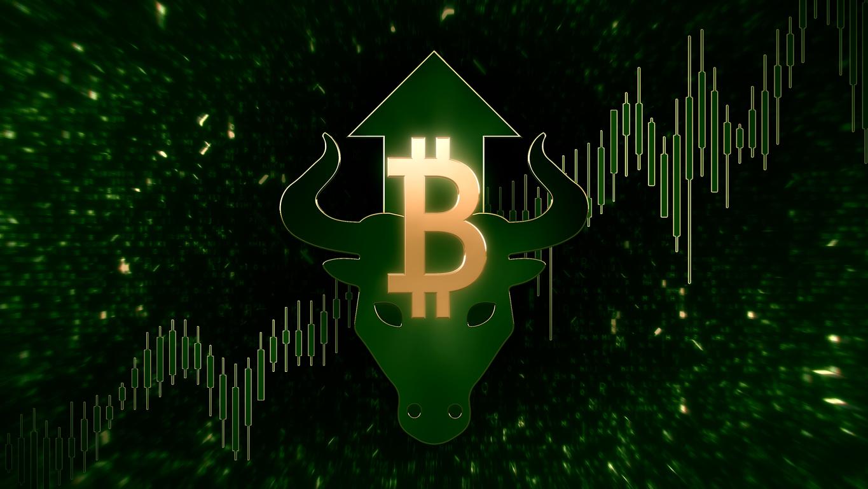 bitcoin bull trend