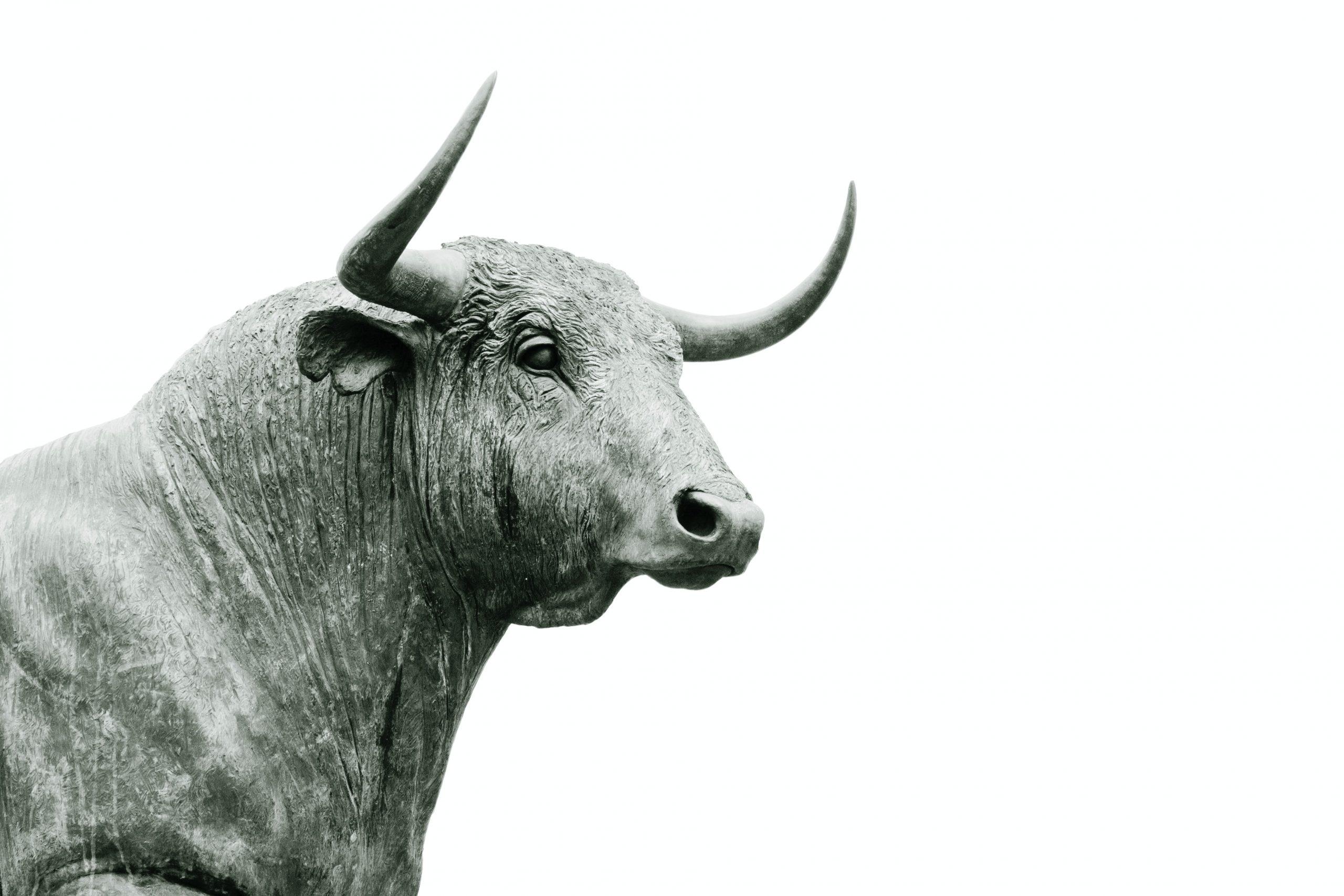 Bitcoin Bull