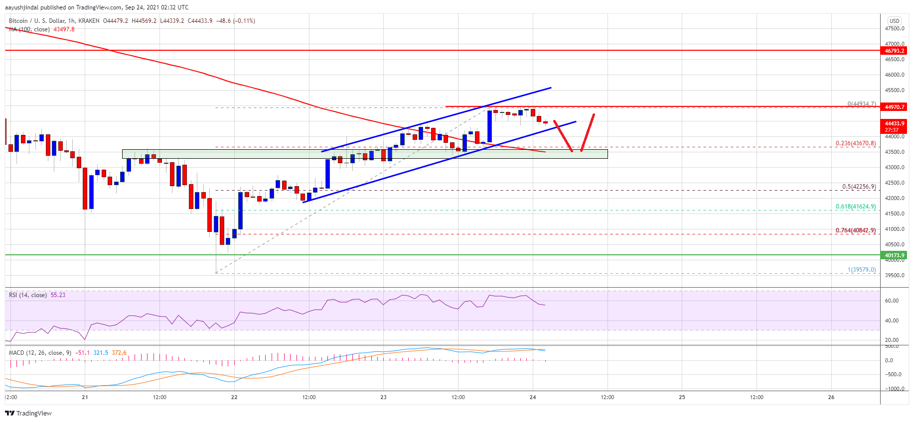 TA: Bitcoin Revisits $45K, Why Dips Turn Attractive In Short-term