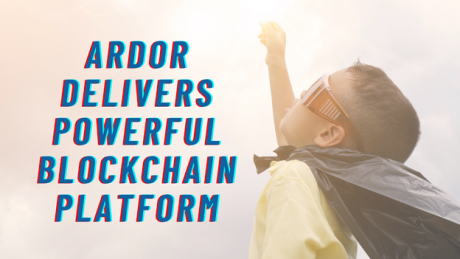Non-Fungible Token (NFT) Collection - Ardor Delivers Powerful Blockchain Platform with Promising Native Support for NFTs