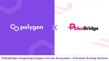 PolkaBridge Integrates with Polygon Full Stack Scaling Solution — Stake PBR on Polygon With Lower Fees and High APY