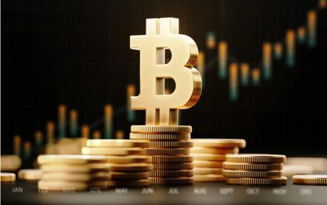 Bitcoin Diamond Hands Reach New Highs, Preview Before Fresh Rally?