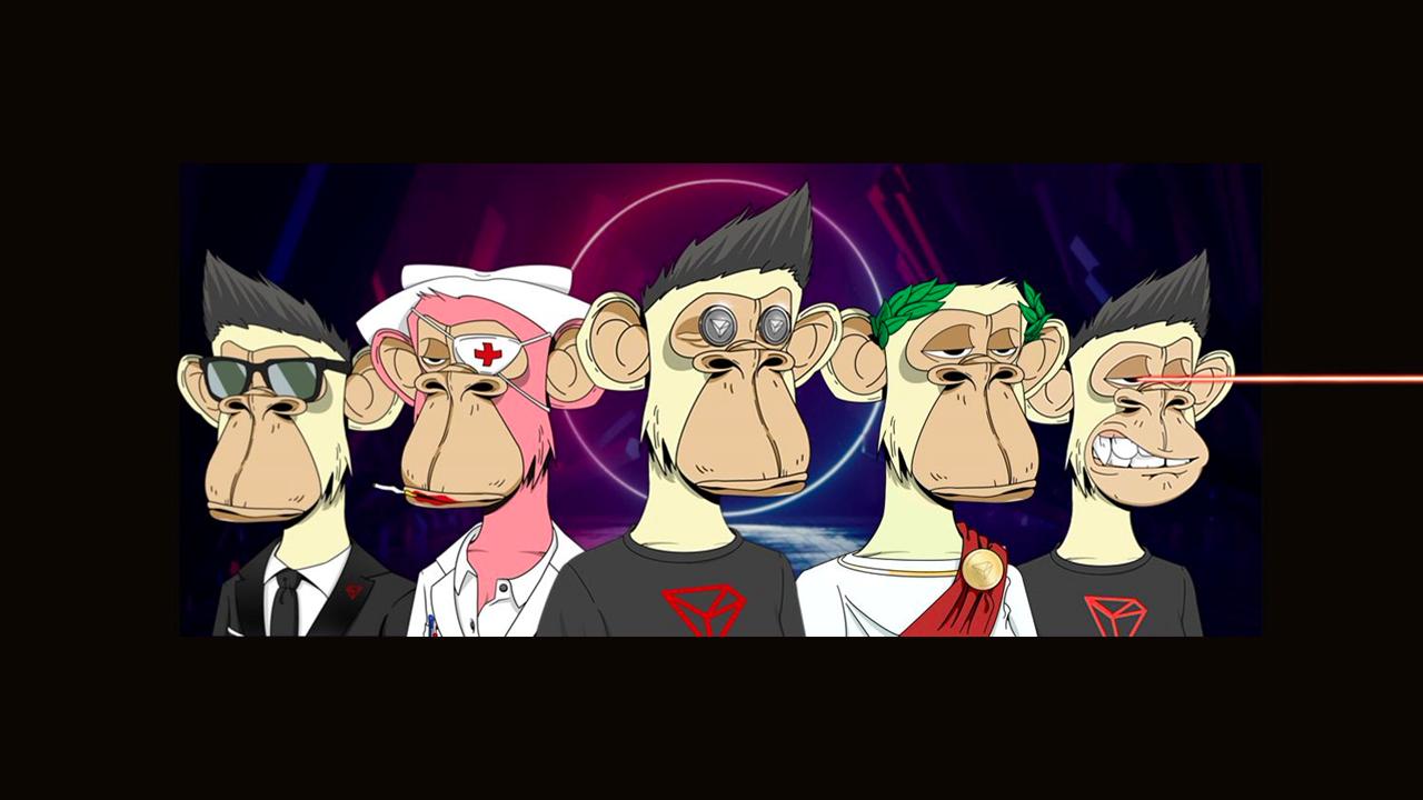 bored apes