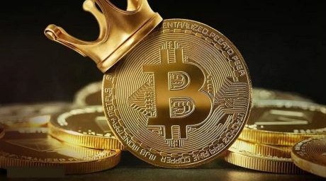 Number Of Bitcoin Whales On The Rise As BTC Chases New All-Time High