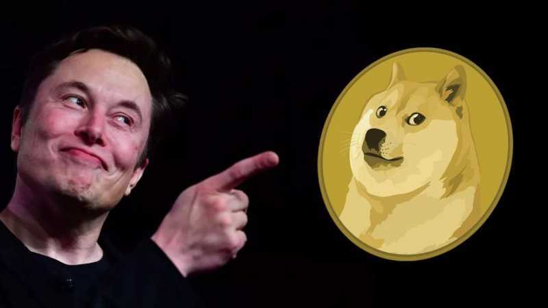Elon Musk Plans To Become The World's First Dogecoin Trillionaire
